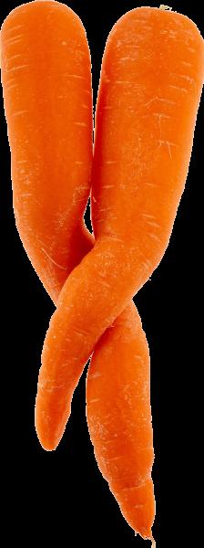 wonky-carrot-3