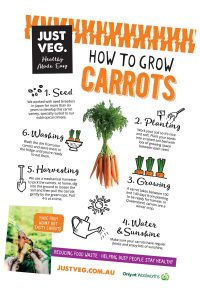 Just-Veg-How-to-Grow-Carrots