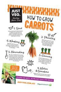 Just-Veg-How-to-Grow-Carrots